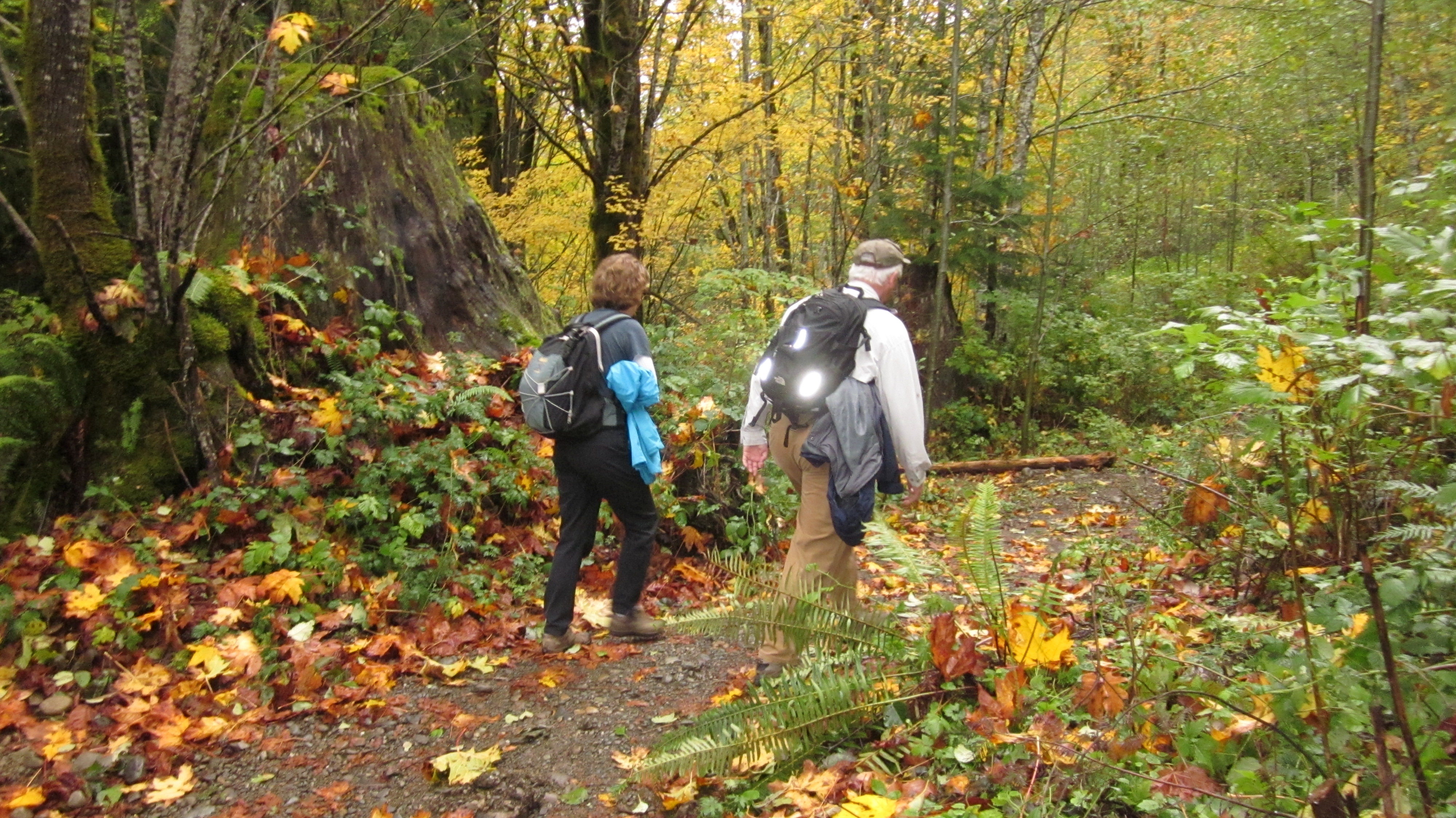 Fall Hike - Photo by DNR